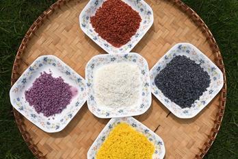 壮族三月三: 制作五色糯米饭迎客