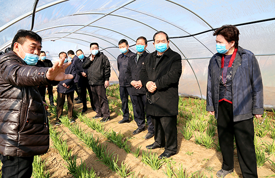 周口扶沟一农民培育韭菜种子 曾搭乘卫星实验