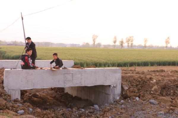 邓州市12万亩高标准农田建设如火如荼