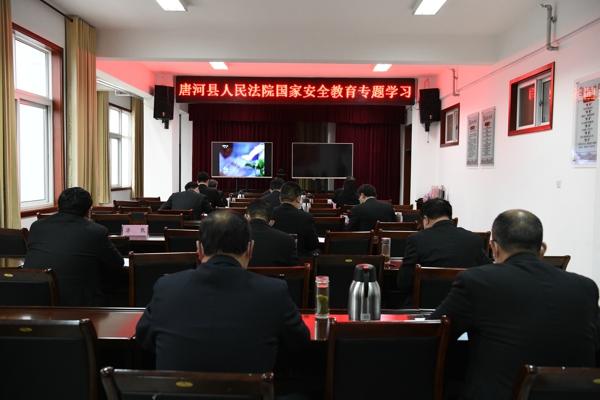 """唐河县人民法院积极开展""""全民国家安全教育日""""主题宣传活动"""