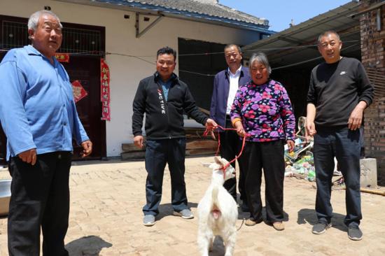 """太康县道路运输管理局:送来""""扶贫羊"""",贫困户脱贫有希望"""