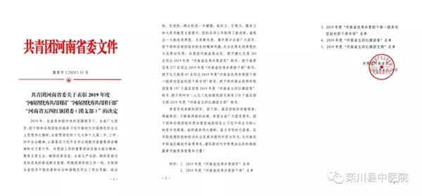 """栾川县中医院团总支获评2019年度""""河南省五四红旗团支部"""""""
