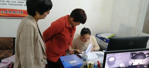 西峡县五里桥镇:扶贫领域等问题整改掷地有声