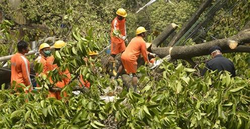 印度清理风暴灾区 以恢复正常生活