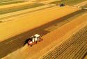 南阳市宛城区:高标准粮田保障粮食安全