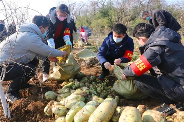 邓州农商银行共青团工作获南阳表彰