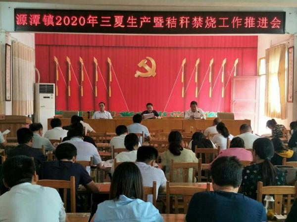 唐河县源潭镇:抢抓农时 做好抢收抢种工作