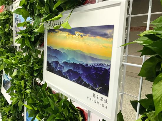 """""""守护绿色 佑护健康""""洛阳白云山生态摄影大展启动仪式在郑州举办"""