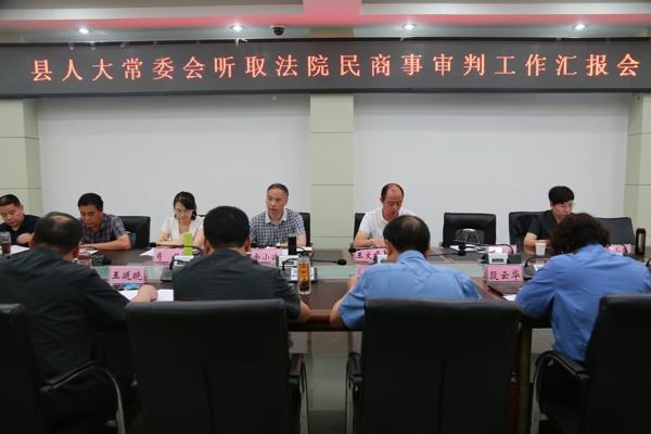 镇平县人大常委会听取县法院民商事审判工作汇报