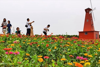 河南伊川:厚植发展优势 盘活沟域经济