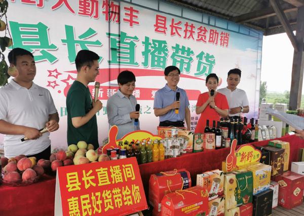 新野县长直播现场带好货拓农产品销路