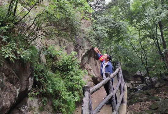 夏季汛期来临,老君山景区开展汛期安全隐患大排查