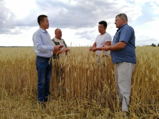 中欧班列首发 河南省黄泛区实业集团喷灌机助力乌克兰农业发展