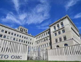 世贸组织预计第二季度全球贸易降幅或达18.5%