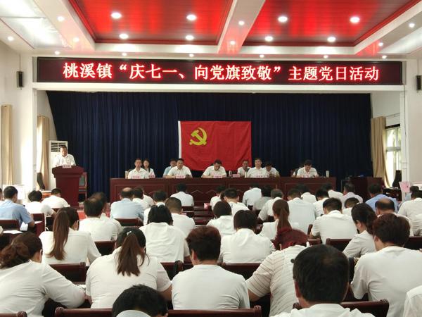 """内乡县桃溪镇举行""""庆七一向党旗致敬""""主题党日活动"""