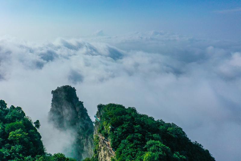 焦作云台山:雨后初晴 壮美云海惊艳游客