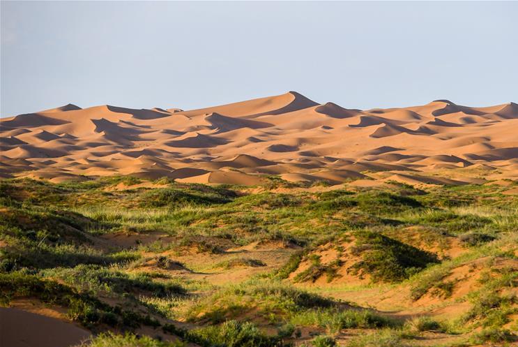 腾格里沙漠:夏日风光 美不胜收