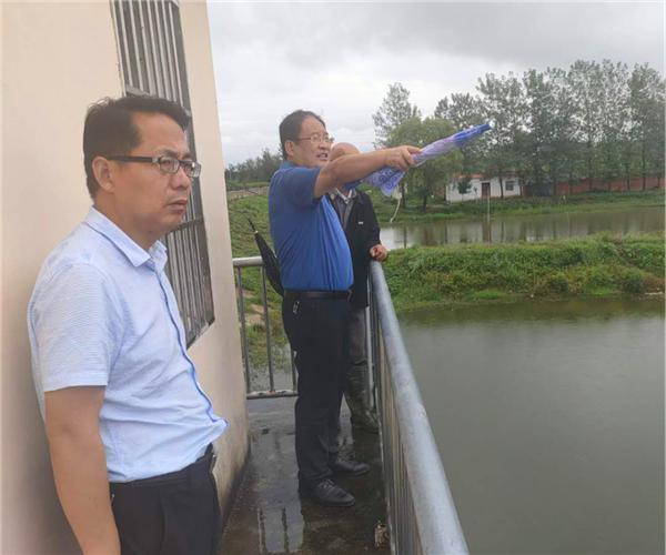 唐河县东王集乡:凝聚党建合力 筑牢防汛安全堤
