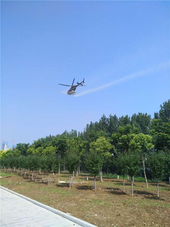驻马店泌阳县圆满完成飞机防治 美国白蛾及杨树食叶害虫工作