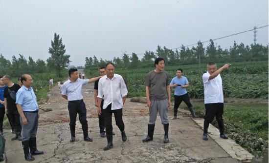 遂平县石寨铺镇:县领导到石寨铺镇  调研指导防汛工作