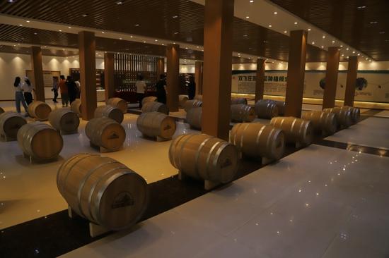 【决胜2020 河南更出彩】商丘民权:葡萄美酒映碧水,三产融合产业兴