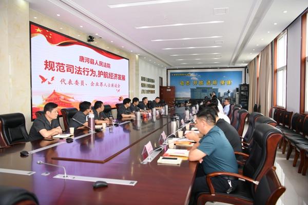 规范司法行为 护航经济发展——唐河县法院召开代表座谈会共商优化法治化营商环境