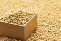 芝加哥期货交易所玉米、小麦和大豆期价4日全线下跌