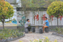 【六村共建看太康网络主题宣传】大许寨赫庄村:能人回村,激活乡村振兴新动能