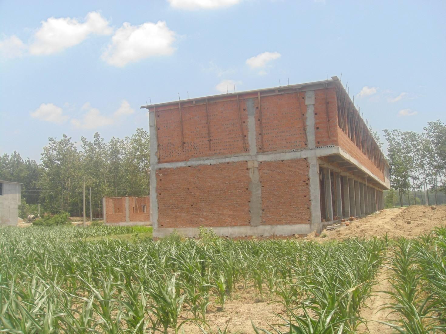 政策解读:疏堵结合,整治乱占耕地问题 保障农民合理建房用地