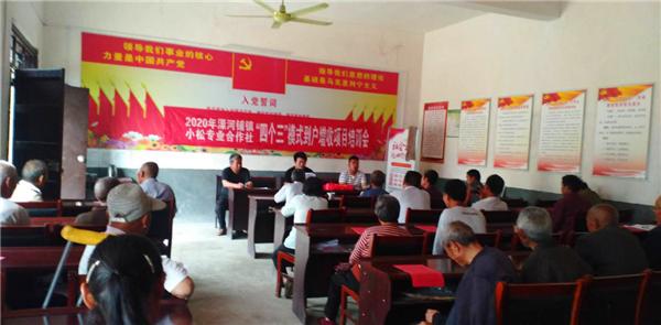 新野县溧河铺镇:抓好产业扶贫,促进稳定增收