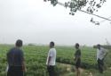 遂平县石寨铺镇:审核把关促自我发展  奖补资金落实