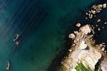 山东长岛:加大生态保护 秀美尽显
