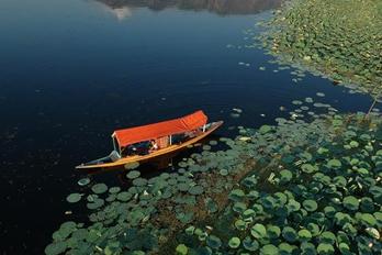 德尔湖:荷花夕照