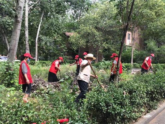 """郑州市文化路街道社区楼院卫生环境治理有""""妙招"""""""