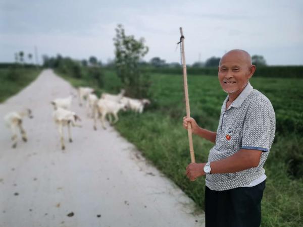唐河县源潭镇:老羊倌喜奔脱贫致富路