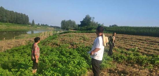 遂平县石寨铺镇:深入开展破堤种植及非法围垦专项整治行动