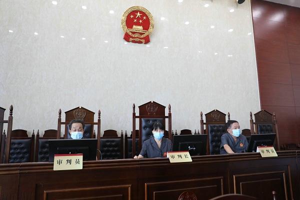 内乡法院公开开庭审理一起19人恶势力犯罪集团案件
