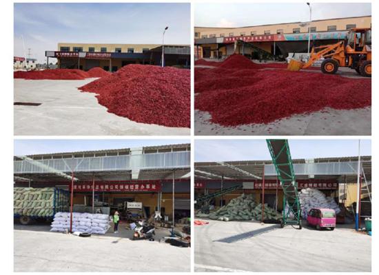 2020中国农民丰收节暨临颍农产品品牌发布会隆重开幕