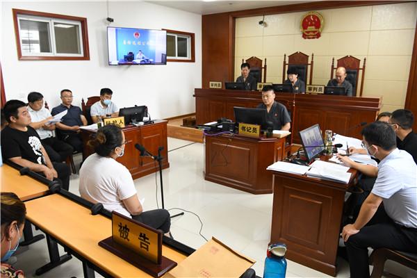 唐河县人民法院远程开庭审理恶势力犯罪案件