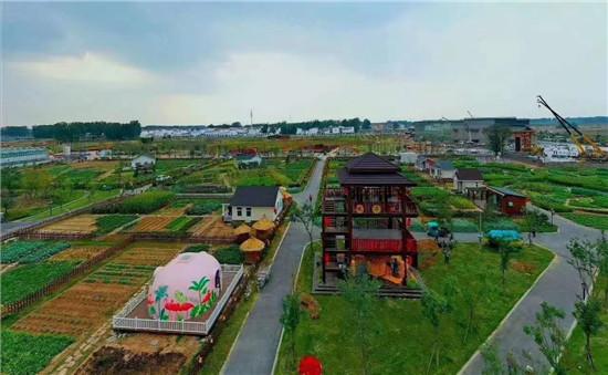 大美西姜寨,田园新生活--中国农民丰收节河南分会场即拉开帷幕!