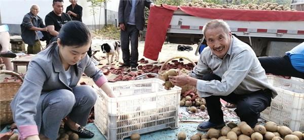 西峡县五里桥镇:贫困户喜迎丰收秋实好时光