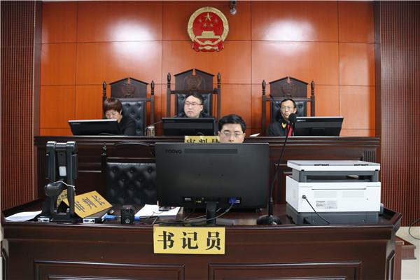 南阳市宛城区法院审理一起恶势力犯罪团伙案