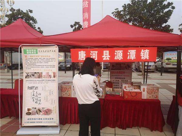 唐河县源潭镇:毛驴产业促脱贫