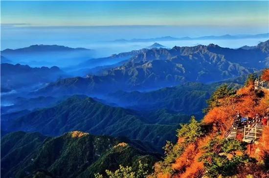 秋已至,老君山上被大自然打翻了调色盘