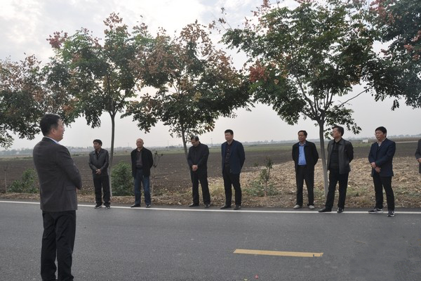 新野县人大常委会开展视察农村公路建设养护情况暨代表建议重点督办活动