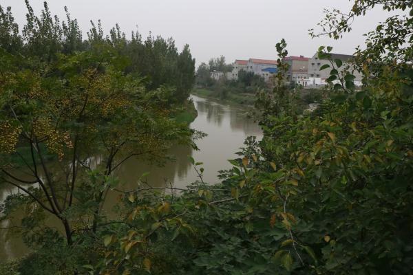 【行走大运河】日过船百只 浚县运河上的古码头村