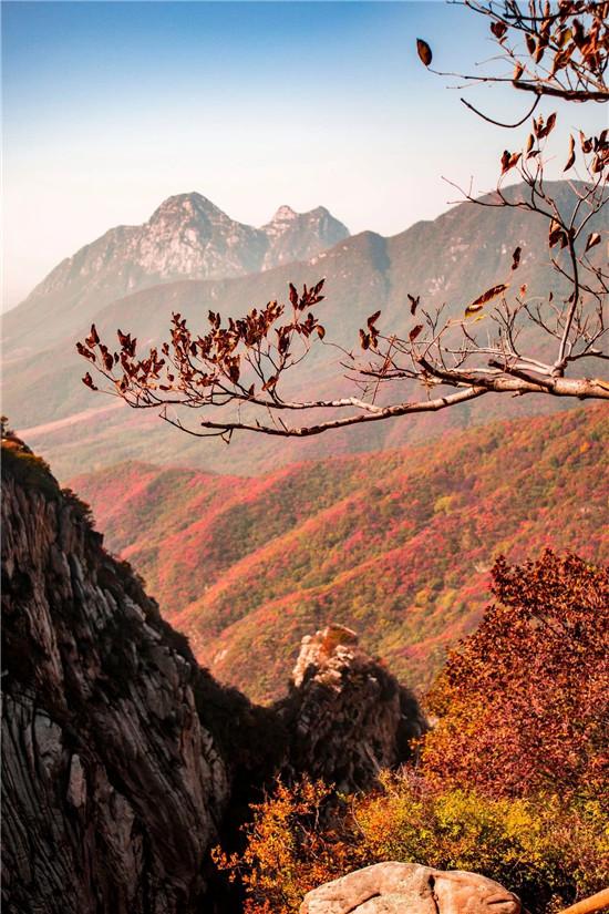 重阳佳节,陪父母来中岳嵩山吧!登高、敬老一样都不少