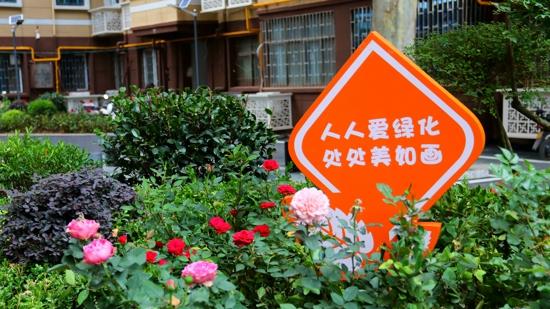 【郑在蝶变】郑州市五里堡街道:携手创建美好家园 共治共享品质生活