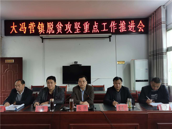 社旗县扶贫办主任张伟到大冯营镇指导脱贫攻坚工作