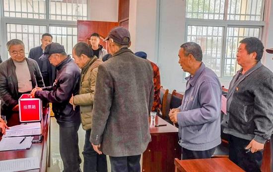 驻马店市正阳县永兴镇圆满完成村级支部换届选举工作